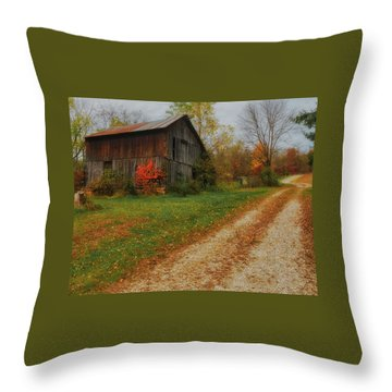 Mystical Country Lane  Throw Pillow