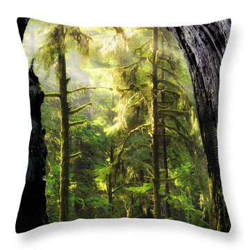 Mystical Forest Opening Throw Pillow by Leland D Howard