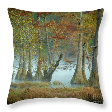 Throw Pillow featuring the photograph Mystical Mist by Iris Greenwell