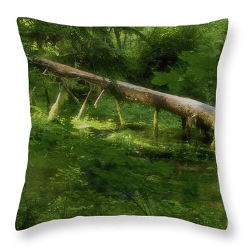 Mystical Waters Throw Pillow