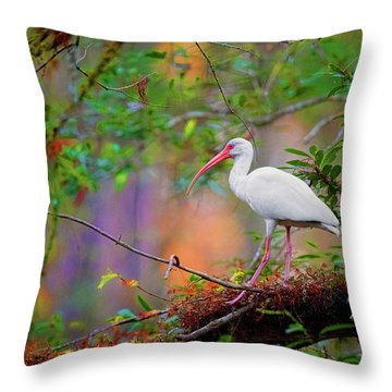 Mystical White Ibis Throw Pillow
