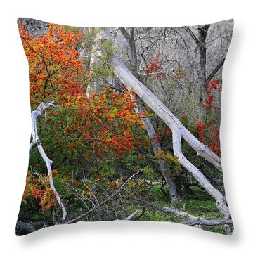 Mystical Woodland Throw Pillow