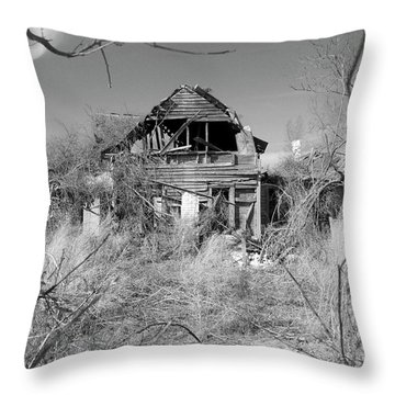 Throw Pillow featuring the photograph N C Ruins 2 by Mike McGlothlen
