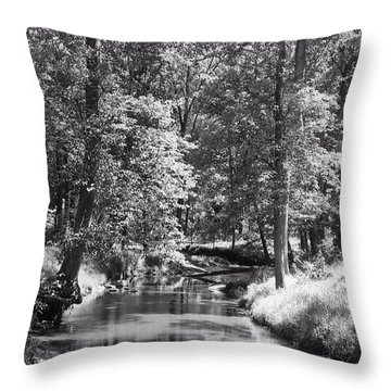 Throw Pillow featuring the photograph Nadine's Creek In Black And White by Kathy Kelly