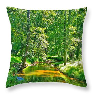 Nadine's Creek Throw Pillow