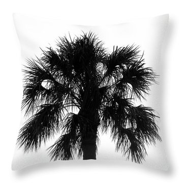 Naked Palm Throw Pillow by David Lee Thompson