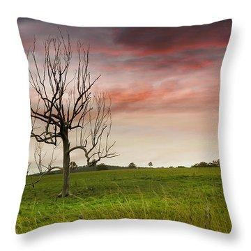 Naked Tree 01 Throw Pillow