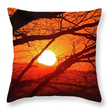 Naked Tree At Sunset, Smith Mountain Lake, Va. Throw Pillow