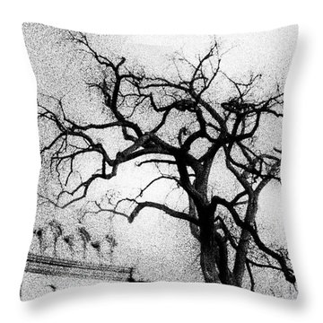 Naked Tree Throw Pillow by Celso Bressan