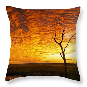 Naked Tree Throw Pillow by Phill Doherty