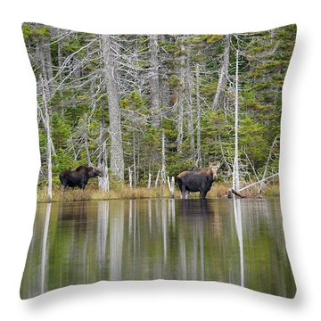 Nancy Pond - White Mountains New Hampshire Usa Throw Pillow