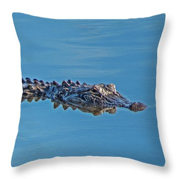 Nancy's Choice Throw Pillow