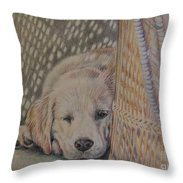 Nap Time Throw Pillow by Gail Dolphin