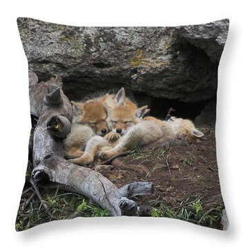 Throw Pillow featuring the photograph Nap Time by Steve Stuller