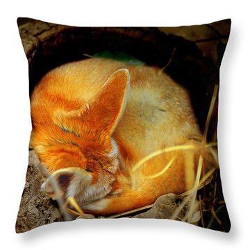 Napping Fennec Fox Throw Pillow