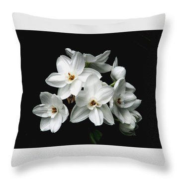 Narcissus The Breath Of Spring Throw Pillow by Angela Davies