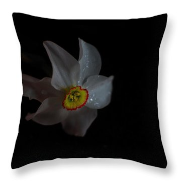 Throw Pillow featuring the photograph Narcissus by Susan Capuano