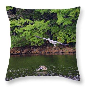 Narrow Escape Throw Pillow