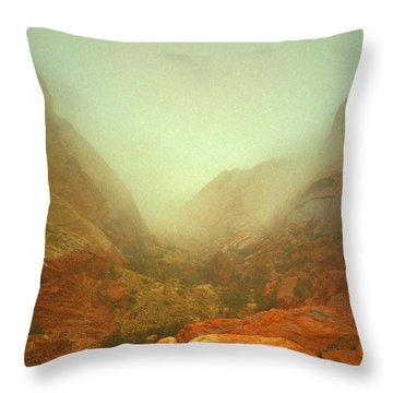 Narrow Out Throw Pillow