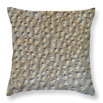 Nasa Image- Star Dunes, Algeria-2 Throw Pillow