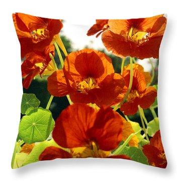 Nasturtiums Throw Pillow