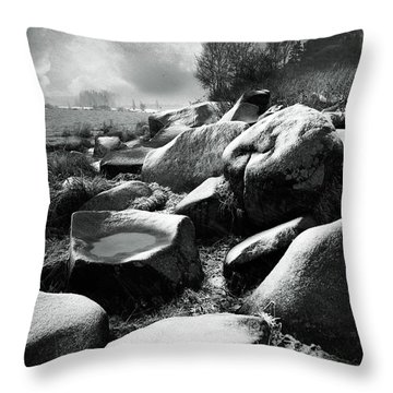 Nasty Weather Throw Pillow