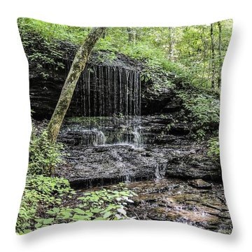 Natchez Trace Waterfall Throw Pillow