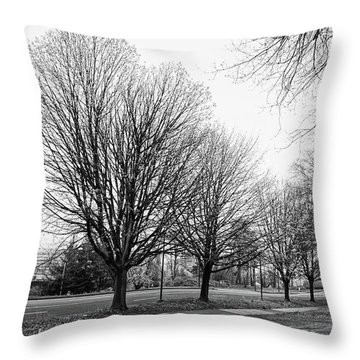 Natio Parkway Throw Pillow by Angi Parks