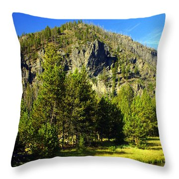 National Park Mountain Throw Pillow by Marty Koch