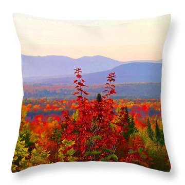 National Scenic Byway Throw Pillow
