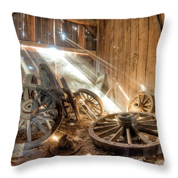 National Treasure Throw Pillow