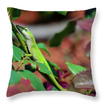 Native Anole Throw Pillow