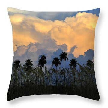 Native Florida Throw Pillow by David Lee Thompson