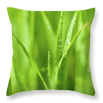 Native Prairie Grasses Throw Pillow by Steve Gadomski