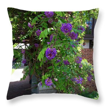 Native Wisteria Vine I Throw Pillow
