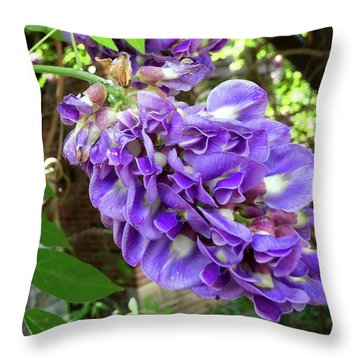 Native Wisteria Vine II Throw Pillow