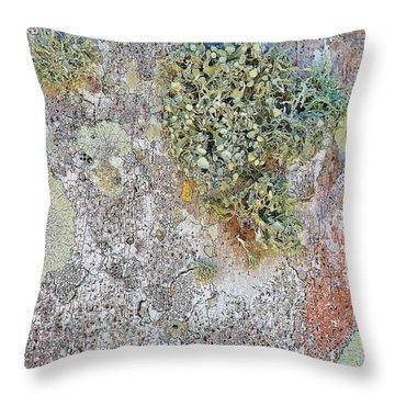 Natural 10 17e Throw Pillow