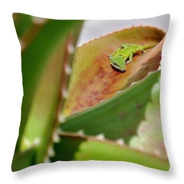Natural 3 14 Throw Pillow