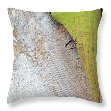 Natural 8 15c Throw Pillow