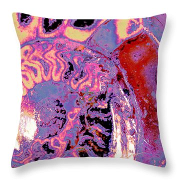 Natural Abstract Throw Pillow by M Diane Bonaparte