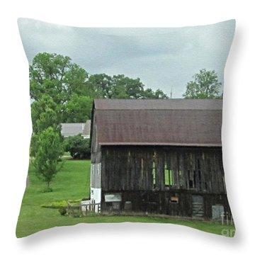 Natural Air Conditioning Throw Pillow