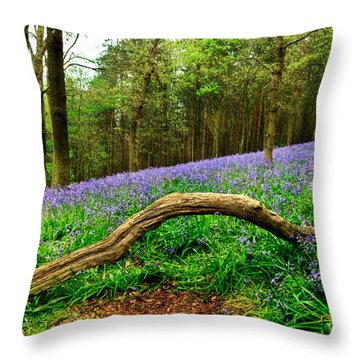 Natural Arch And Bluebells Throw Pillow by John Edwards