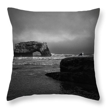 Natural Bridge And The Gull Throw Pillow