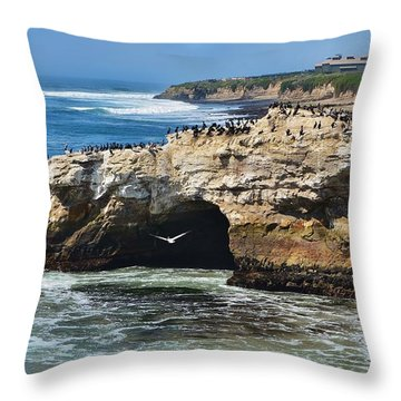 Natural Bridges Santa Cruz Throw Pillow
