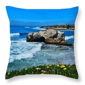 Natural Bridges State Park View Throw Pillow