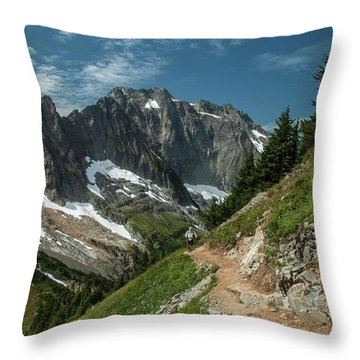 Natural Cathedral Throw Pillow
