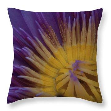 Natural Colors Throw Pillow