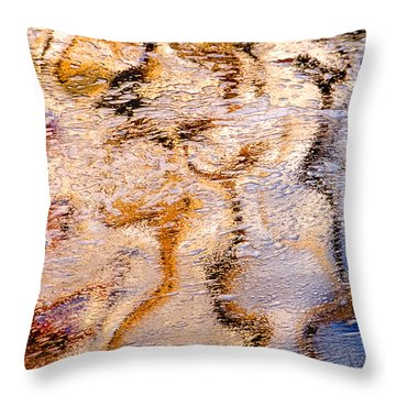 Natural Curves Throw Pillow by Linda McRae