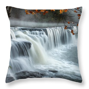 Natural Dam Falls Throw Pillow by James Barber