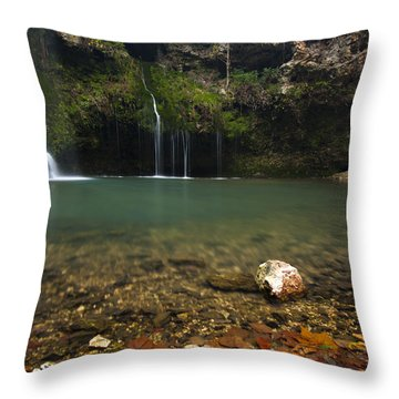Natural Falls Throw Pillow